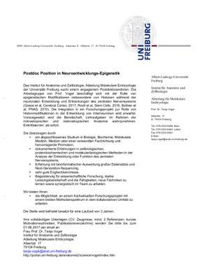 post-doc interneurons_deutsch.jpg
